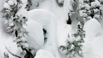 photo: Bryn Hughes; skier Tanner Rainville at Mustang Powder, BC