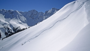 photo: Scott DW Smith; skier: Sven Brunso; snow: Silverton Mountain, CO