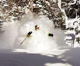 Snowy skiier